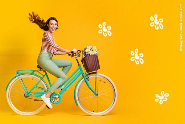 Vrs Fahrradticket